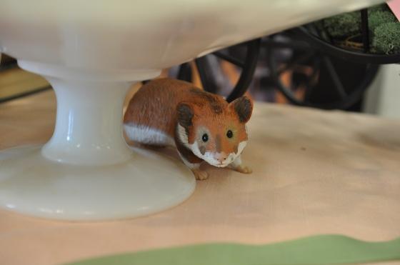 A mouse!