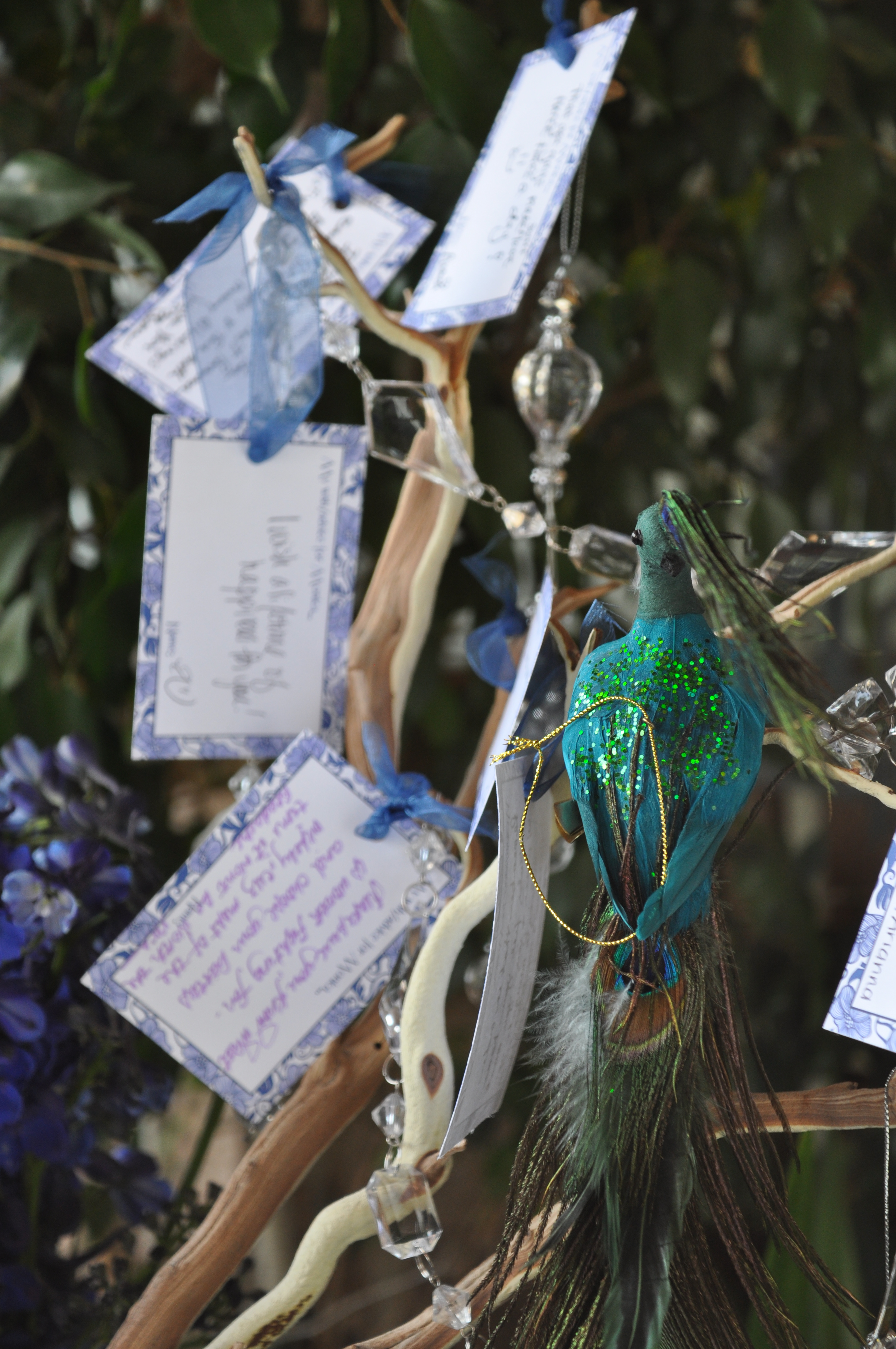 peacock wishing tree with tags events by elisa