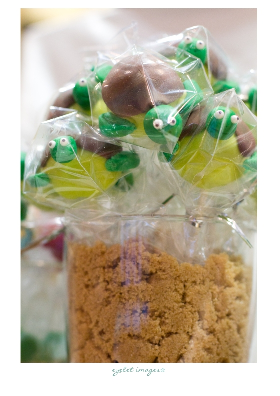 Turtle cake pops by Calculated Whisk!