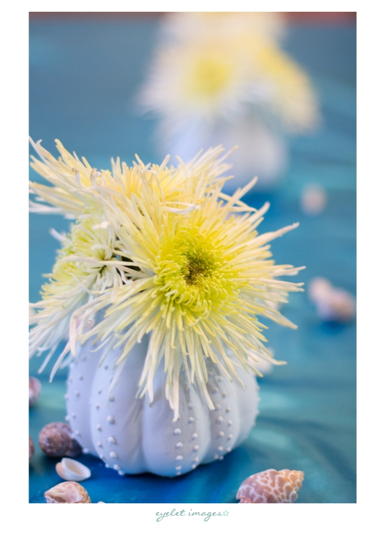 Sea urchin vases by Penny Blooms!