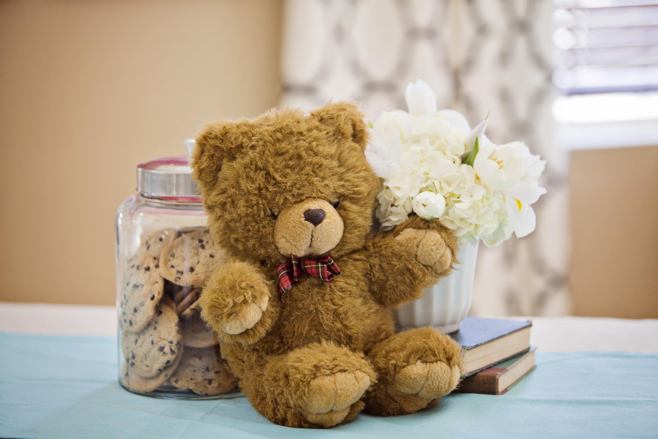 Aidans Teddy Bear First Birthday Party In San Marcos 02182012
